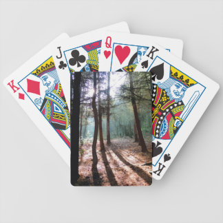 PICTURE 1 BICYCLE PLAYING CARDS