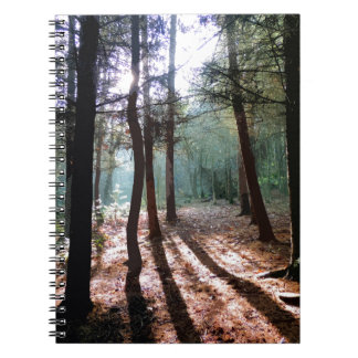 PICTURE 1 SPIRAL NOTEBOOK