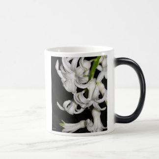 Picture 2437 magic mug