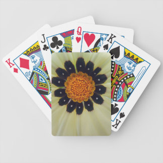 PICTURE 250 BICYCLE PLAYING CARDS