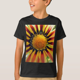 PICTURE 251 T-Shirt