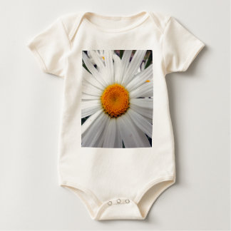 PICTURE 253 BABY BODYSUIT