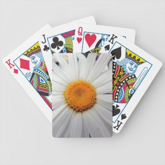 PICTURE 253 BICYCLE PLAYING CARDS