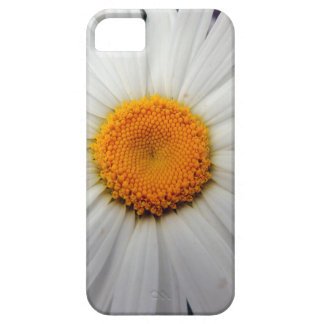 PICTURE 253 iPhone 5 COVER