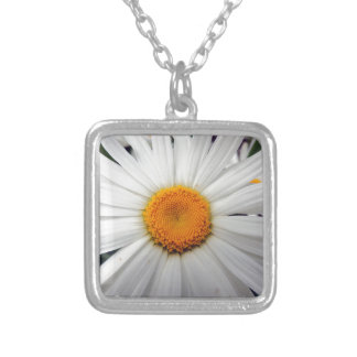 PICTURE 253 SILVER PLATED NECKLACE