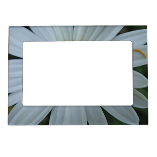 Picture frame large white daisy bloom magnetic picture frame