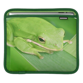 Picture of a Tree Frog iPad Sleeve