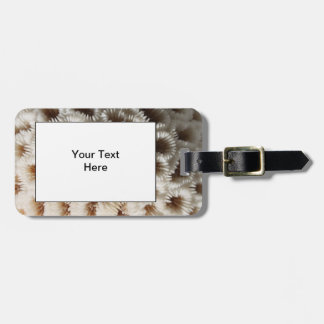 Picture of Coral. Luggage Tag
