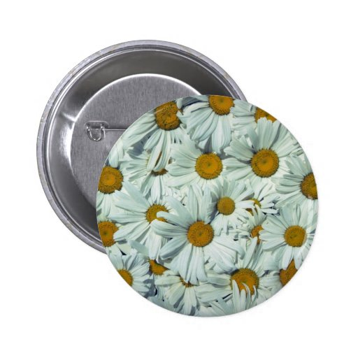 Picture of Daisies Pinback Buttons