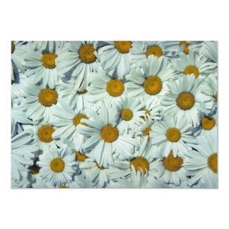 Picture of Daisies 13 Cm X 18 Cm Invitation Card