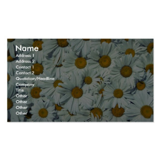 Picture of Daisies Pack Of Standard Business Cards