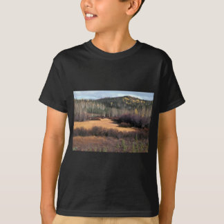 PICTURE OF FALL IN MOUNTAINS SHIRTS