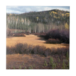 PICTURE OF FALL IN MOUNTAINS SMALL SQUARE TILE