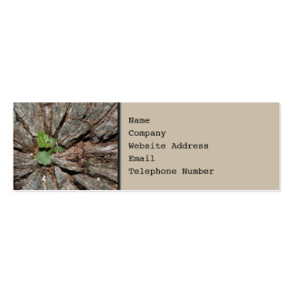 Picture of Old Wood with Plant. Business Card Templates