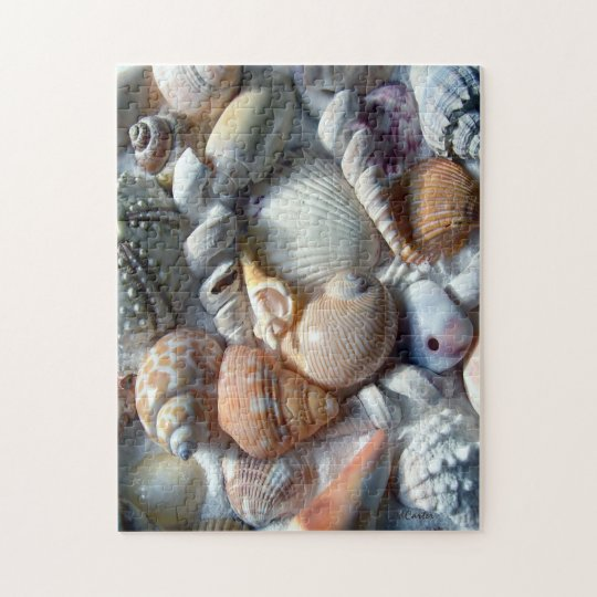 Picture of Seashells Puzzle