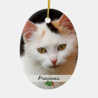 Pictures of Pets Double-Sided Ornament
