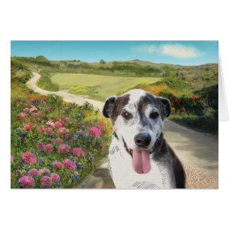 Pie in a Field of Dahlias (Dog on path blank card) Card