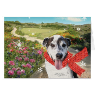 Pie in a Field of Dahlias Holiday Card