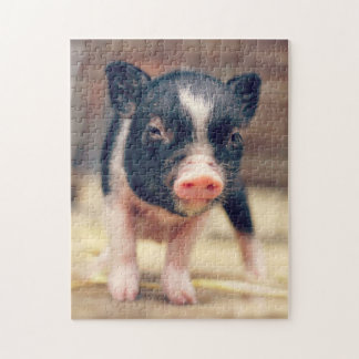Piebald Pig puppy for Pig Lovers Jigsaw Puzzle