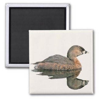 Pied-Billed Grebe Magnet