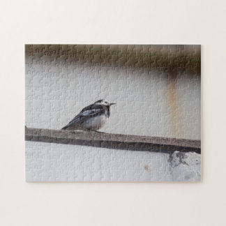Pied Wagtail Jigsaw Puzzle
