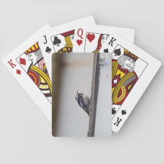 Pied Wagtail Playing Cards