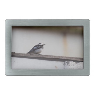 Pied Wagtail Rectangular Belt Buckle