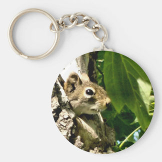 Pieking Suirrel Key Ring