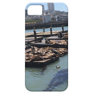 Pier 39 San Francisco California Case For The iPhone 5