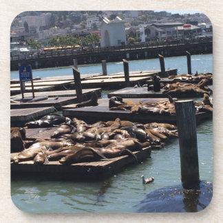 Pier 39 San Francisco California Coaster