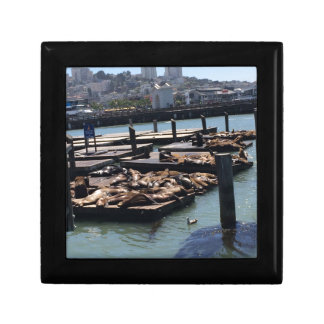 Pier 39 San Francisco California Gift Box