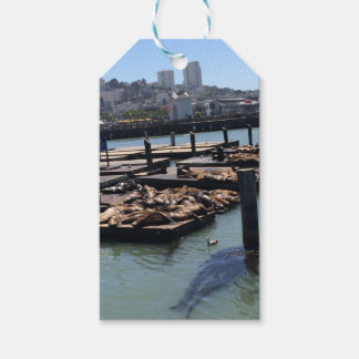 Pier 39 San Francisco California Gift Tags
