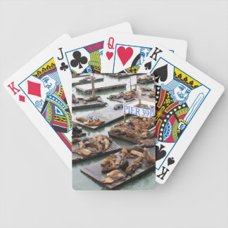 Pier 39 Sea Lions in San Francisco Bicycle Playing Cards