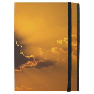 Piercing sunset iPad pro case
