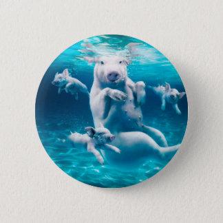 Pig beach - swimming pigs - funny pig 6 cm round badge