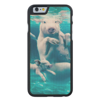 Pig beach - swimming pigs - funny pig carved maple iPhone 6 case