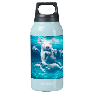 Pig beach - swimming pigs - funny pig insulated water bottle