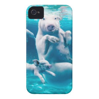 Pig beach - swimming pigs - funny pig iPhone 4 Case-Mate case