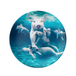 Pig beach - swimming pigs - funny pig plate