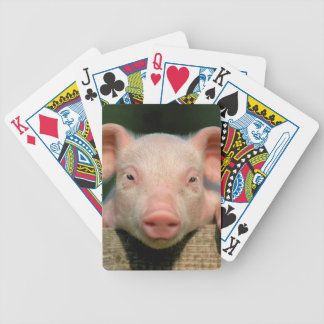 Pig farm - pig face bicycle playing cards