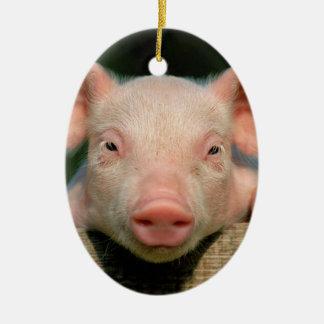 Pig farm - pig face ceramic ornament