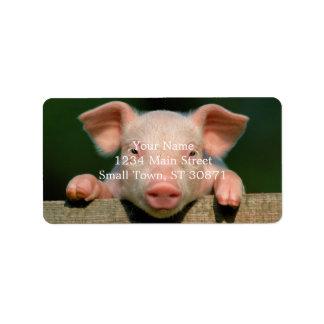 Pig farm - pig face label