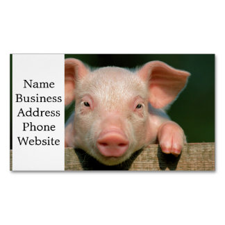 Pig farm - pig face 	Magnetic business card