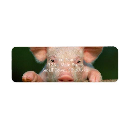 Pig farm - pig face return address label