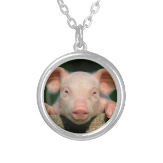 Pig farm - pig face silver plated necklace