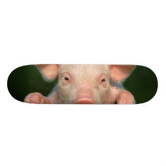 Pig farm - pig face skateboard