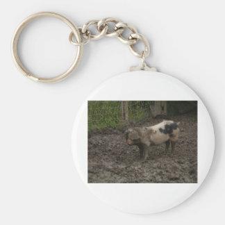 Pig in muck keychains
