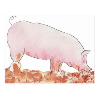 Pig in mud funny novelty art design postcard