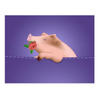 Pig in Pocket Postcard