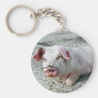 Pig Key ring Basic Round Button Key Ring